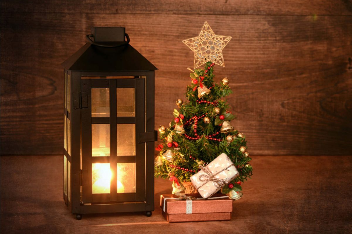 Best Small Christmas Trees